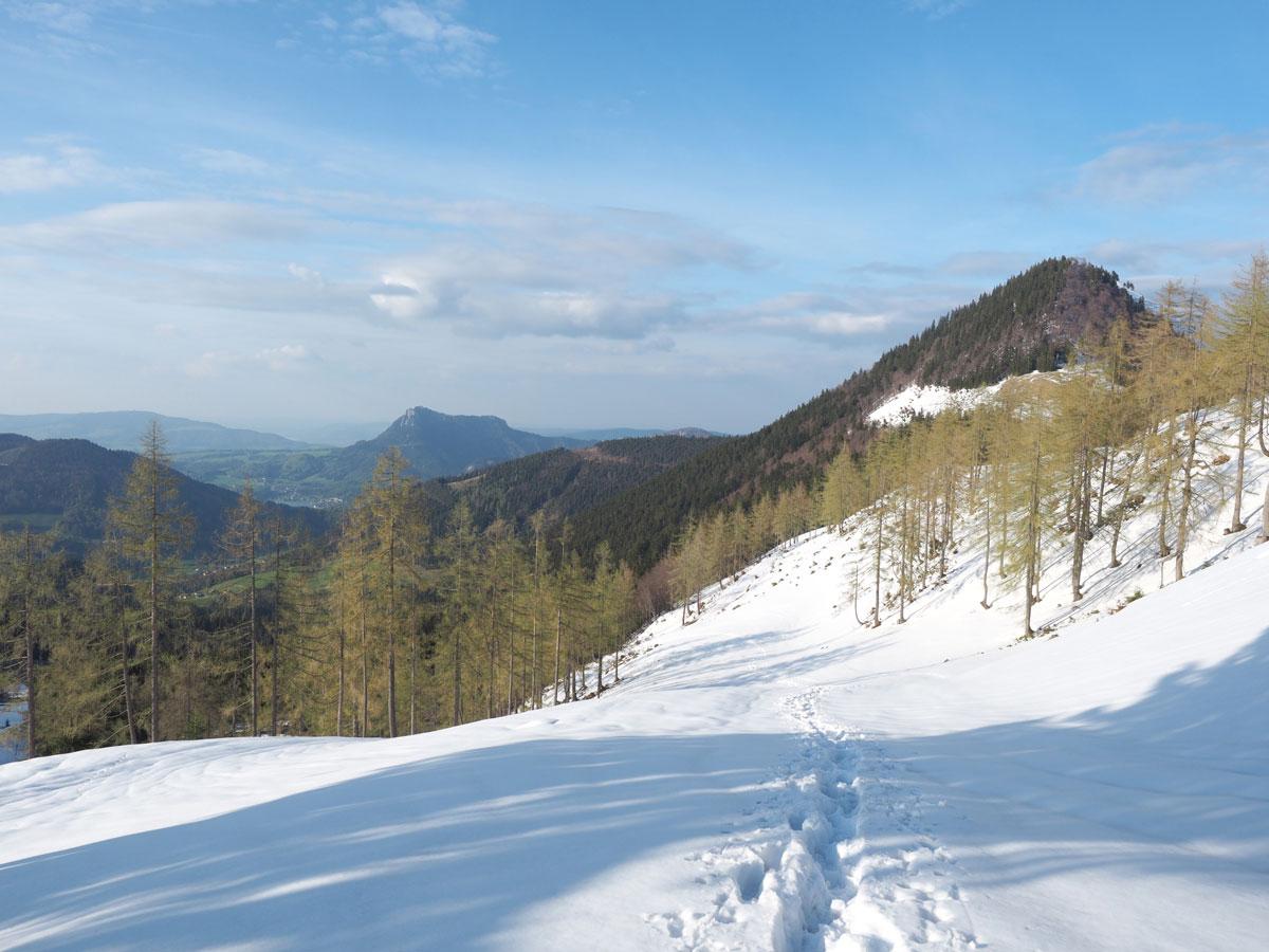 Schneeschuhwandern am Faistenauer Schafberg