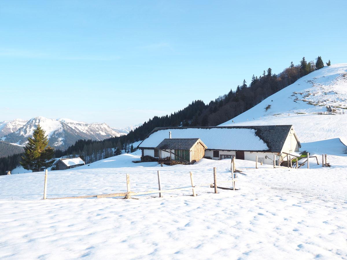 Lanznhütte und Mittereggalm Faistenauer Schafberg