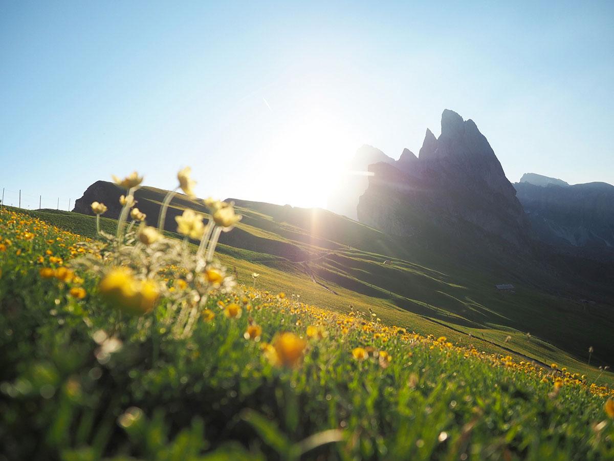 seceda sonnenaufgang dolomiten.suedtirol 5 - Highlights in den Südtiroler Dolomiten