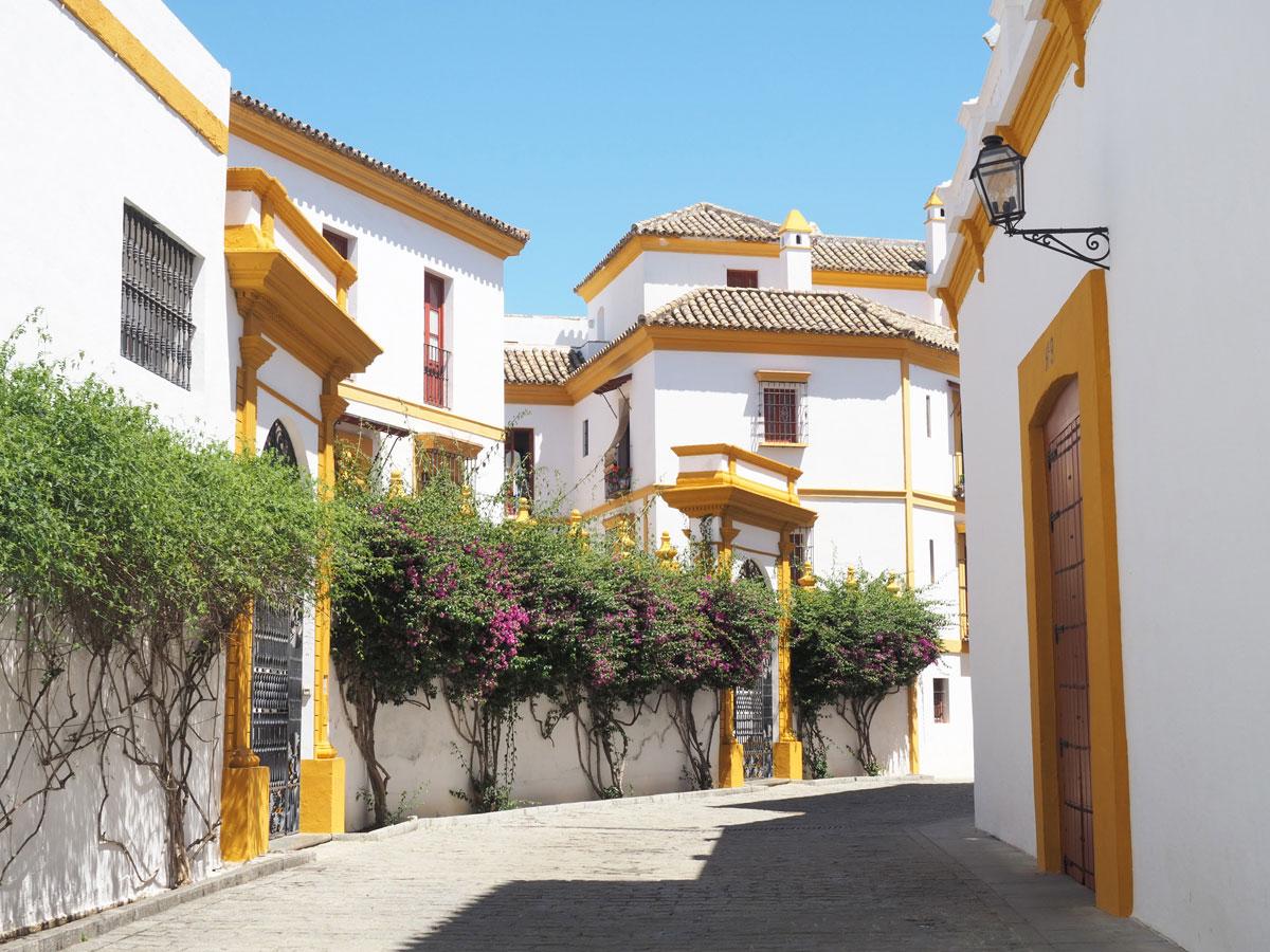 Stierkampfarena Sevilla Andalusien