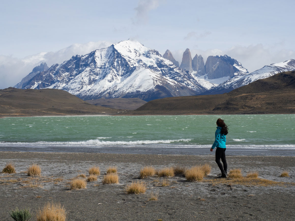 laguna amarga patagonien torres del paine nationalpark chile2 - Torres del Paine Nationalpark ohne W Trek