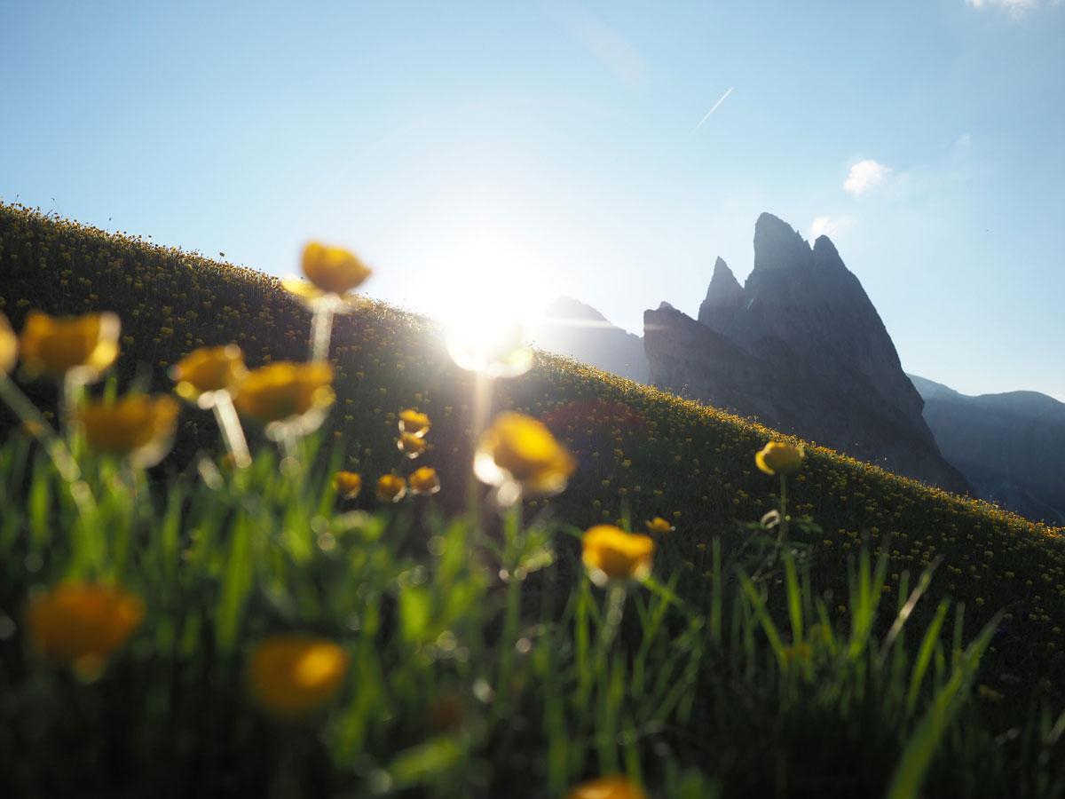 seceda groeden suedtirol dolomiten wandern 9 - Wandern auf die Seceda von Wolkenstein - Sonnenaufgang auf der Seceda