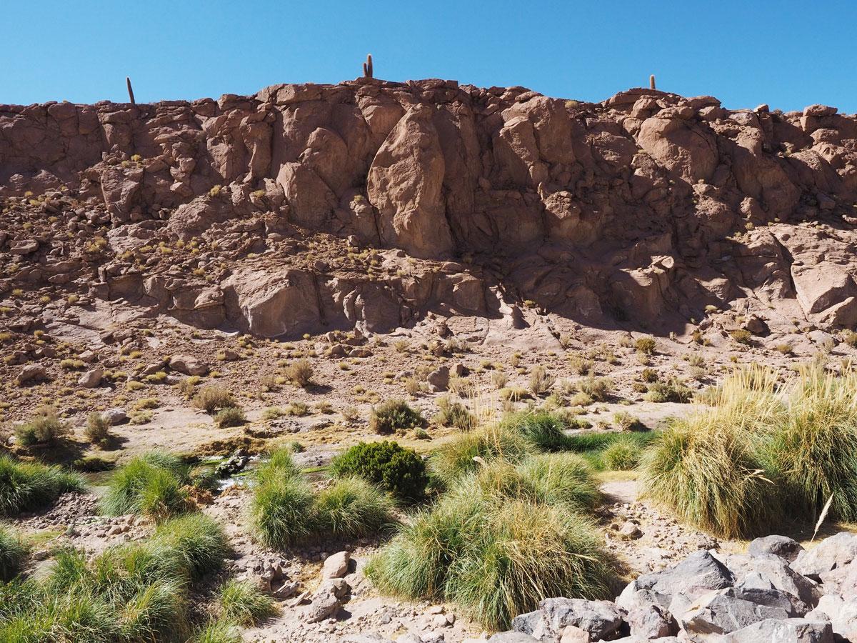 atacama chile 2 - Als Selbstfahrer in der Atacama Wüste in Chile unterwegs
