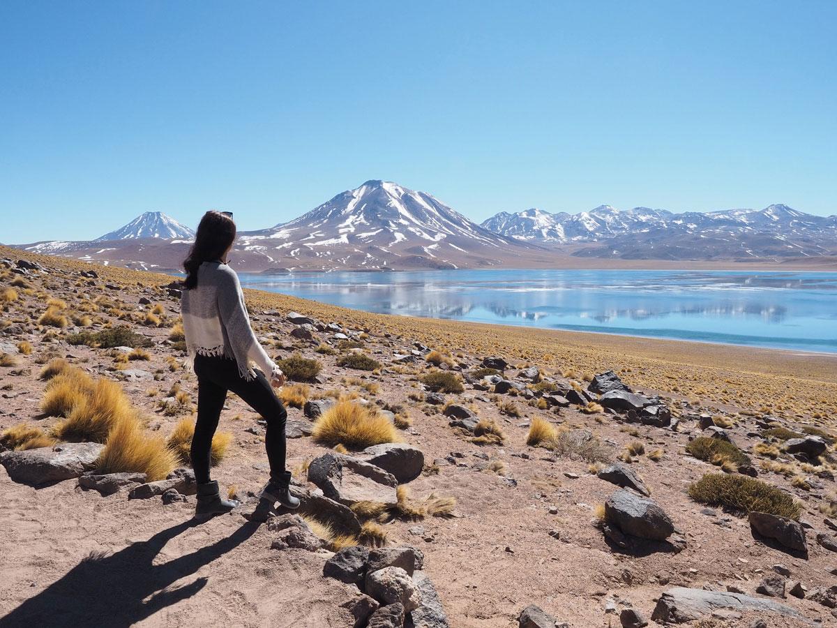 atacama miniques miscanti 1 - Als Selbstfahrer in der Atacama Wüste in Chile unterwegs