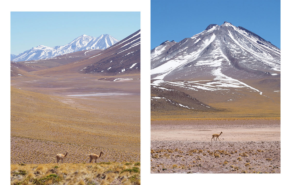 miniques vulkan - Als Selbstfahrer in der Atacama Wüste in Chile unterwegs