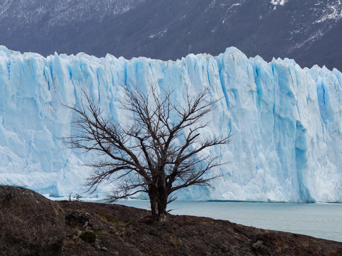 perito moreno gletscher el calafate patagonien18 - (Deutsch) Perito Moreno Gletscher in Patagonien - Reisetipps und Picture Diary