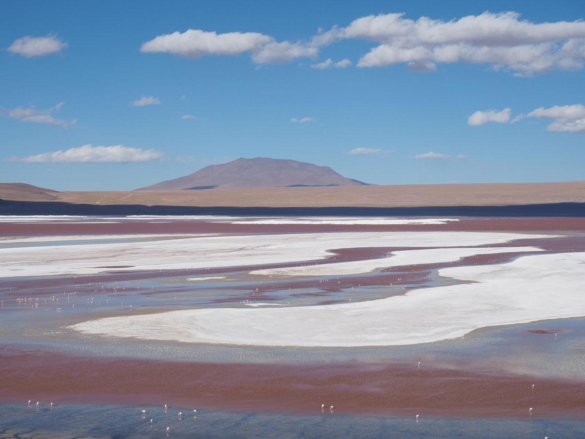 salar de uyuni laguna colorada tour bolivien 20 - Ausflug in die Salar de Uyuni und Laguna Colorada in Bolivien