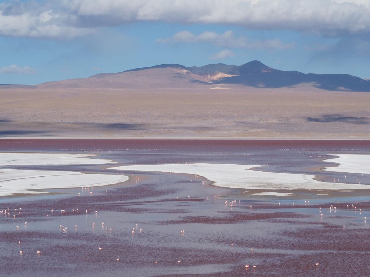 salar de uyuni laguna colorada tour bolivien 22 - Peru und Bolivien im Überblick - Reiseroute Vorschlag