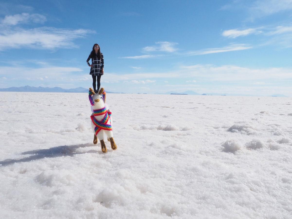 salar de uyuni laguna colorada tour bolivien 5 - Ausflug in die Salar de Uyuni und Laguna Colorada in Bolivien