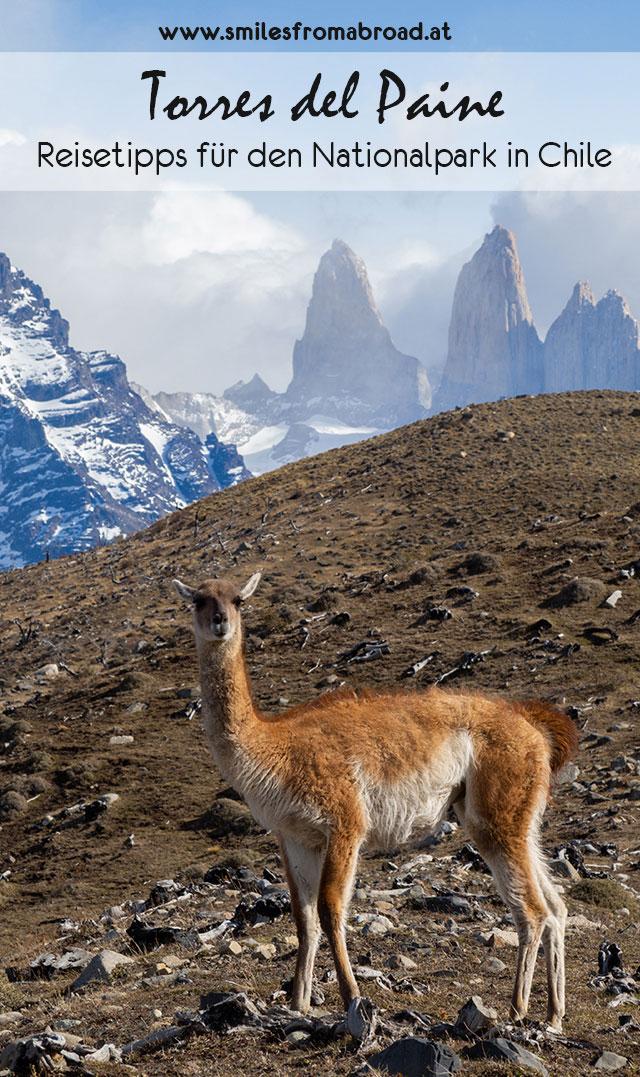 torresdelpaine pinterest3 - Torres del Paine Nationalpark ohne W Trek