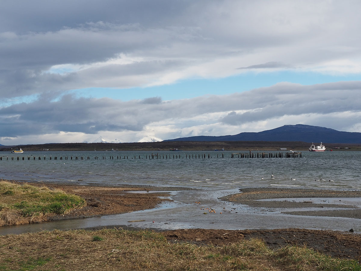 puerto natales chile patagonien 2 - Patagonien im Überblick - ein Reiseguide für deine Planung