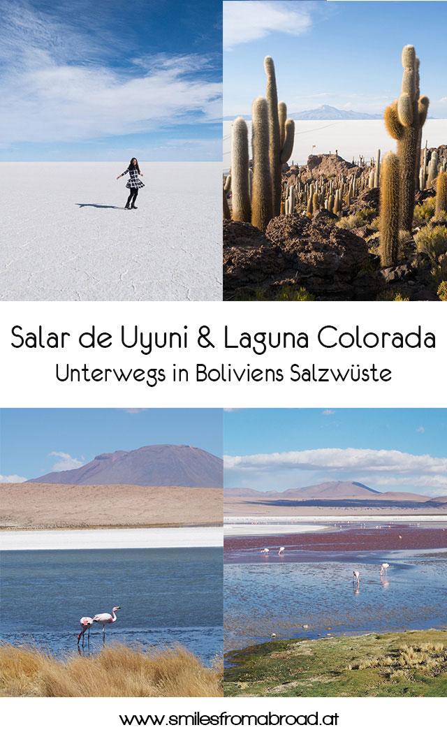 pinterest uyuni laguna colorada - Ausflug in die Salar de Uyuni und Laguna Colorada in Bolivien
