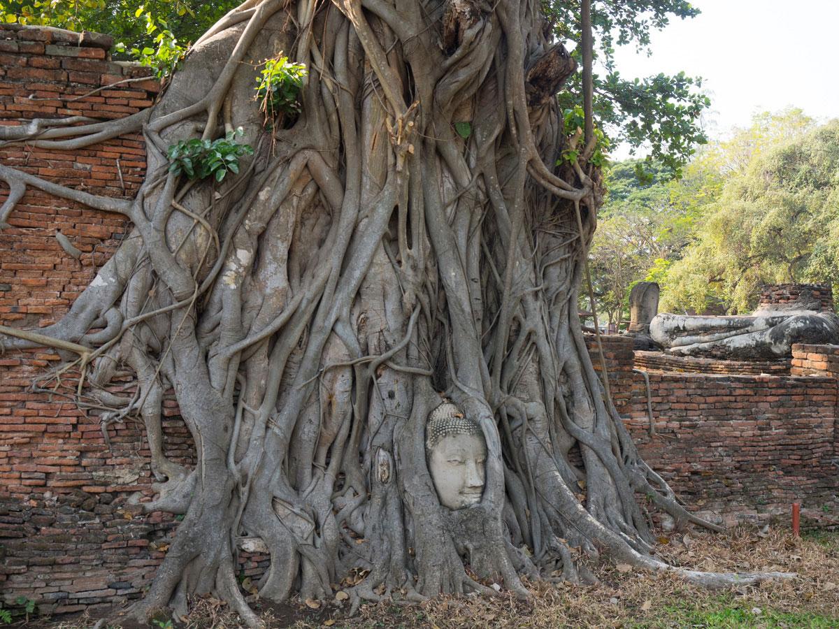 wat ratburana ayutthaya thailand 2 - 9 Orte die man in Ayutthaya, Thailand unbedingt gesehen haben muss