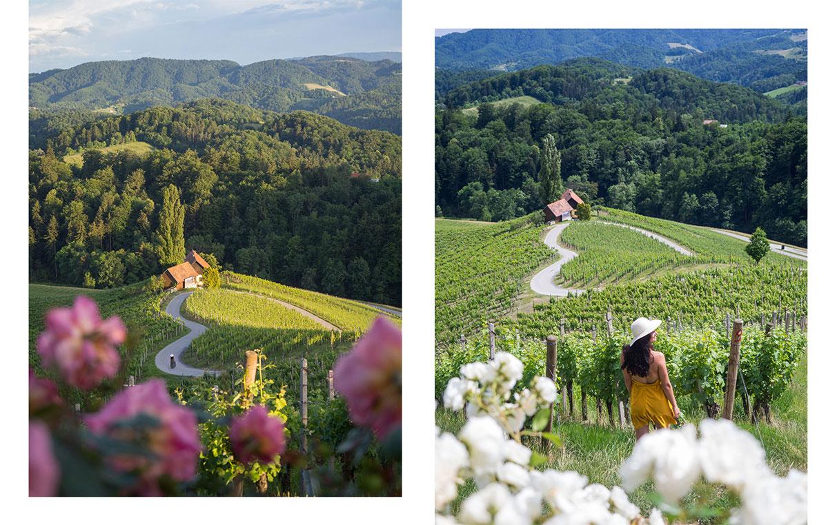 Slowenien Weinstrasse Herzerlstrasse