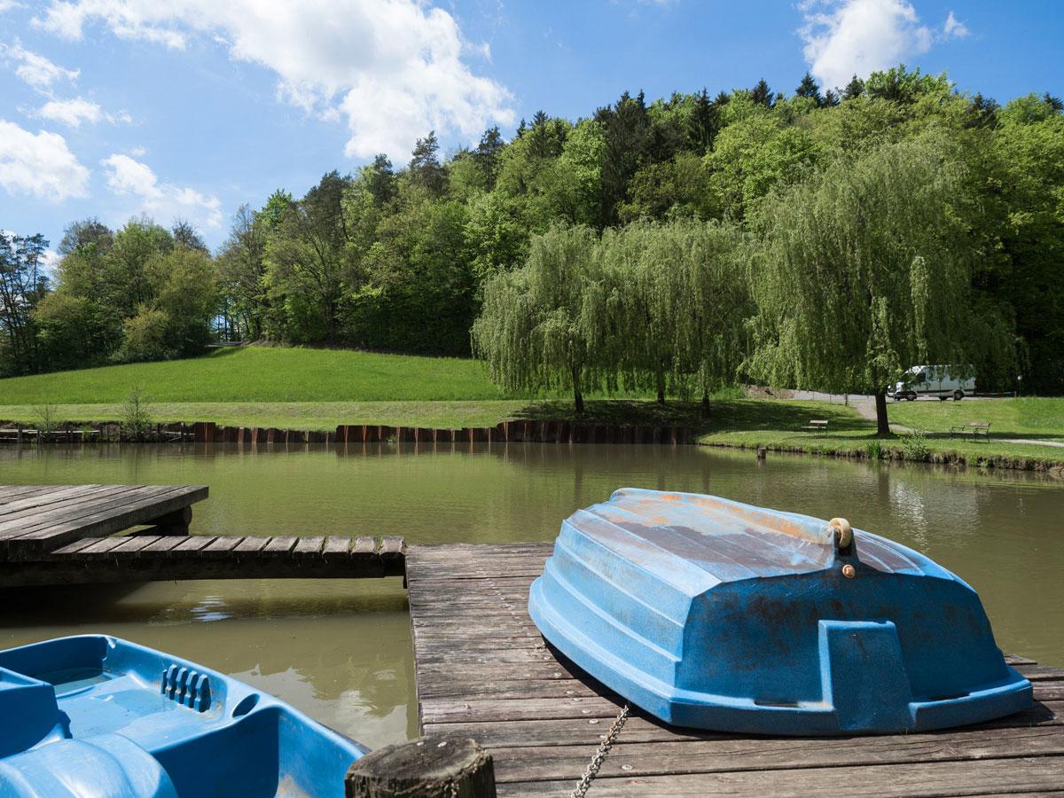 Fischteich Unterlamm Steiermark