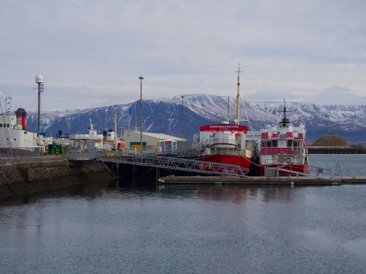 Sehenswuerdigkeiten Reykjavik Island Hafen