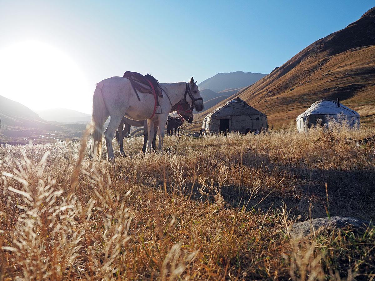 Kirgistan Pferde Reiten